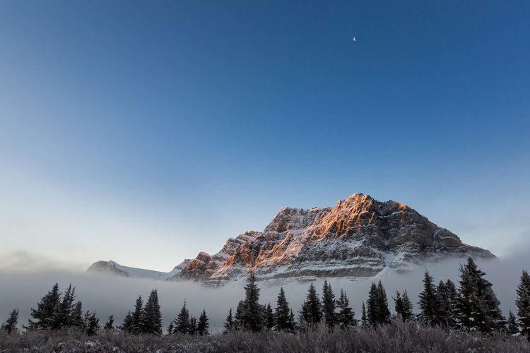 Moon over the mountains. Shot in Alberta at Bow Lake. Nothing like a beautiful sunrise. Mountain Cold Temperature Winter Tranquility Landscape Sky Beauty In Nature Outdoors Sunrise Bow Lake National Park Stunning Epic Moon Blue Sky Clear Sky Canada Canadian Truly Canadian The Great Outdoors - 2017 EyeEm Awards EyeEmNewHere