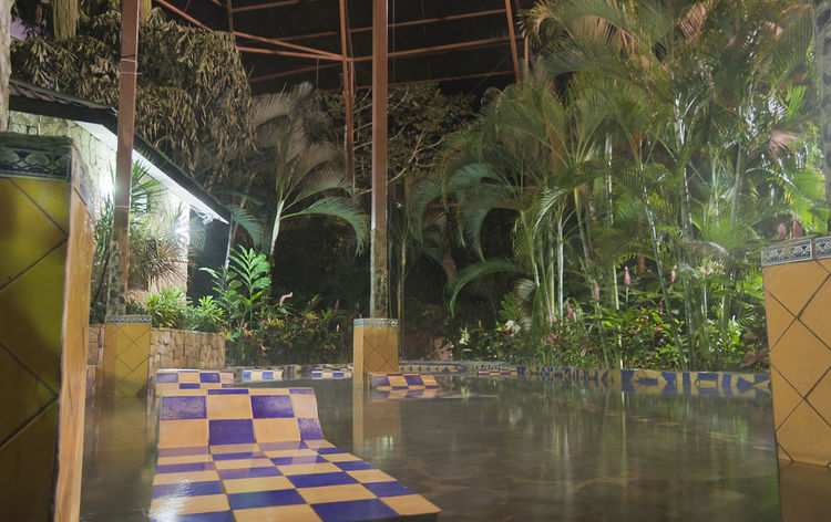 Spa with tiles and tropical plants - La Fortuna, Alajuela province, Costa Rica Architecture Bath Costa Rica Empty Illuminated Jacuzzi  Nature Night No People Oriental Palm Tree Plant Pool Recreation  Relax Relaxation Resort Spa Swimming Pool Tiles Tree Tropical Tropical Climate Water Wellness