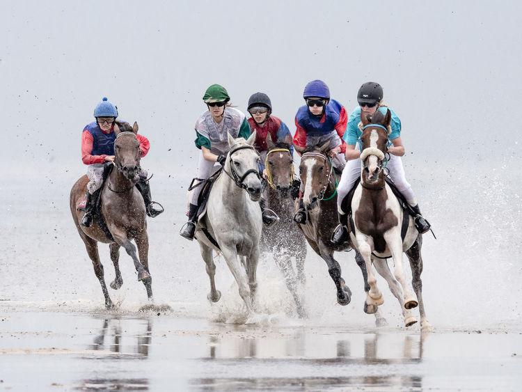 Adventure Animal Themes Beach Fun Galope Race Horse Horseracing Horses Sports Photography