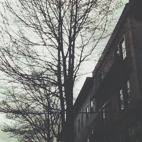 capitol hill, seattle wa. feb. 2013