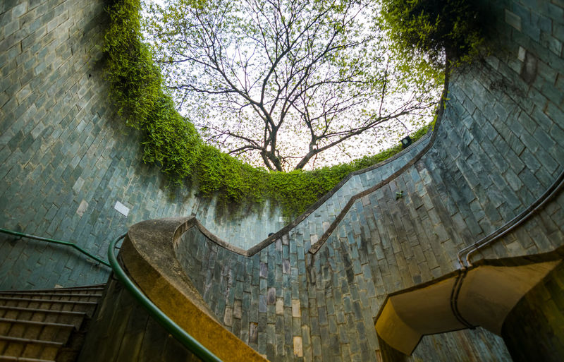 Fort Canning Park Singapore Spiral Staircase Architecture Bare Tree Beauty In Nature Branch Building Exterior Built Structure Concrete Day Low Angle View Nature No People Outdoors Park Plant Reflection Sky Tree Wall Wall - Building Feature Water