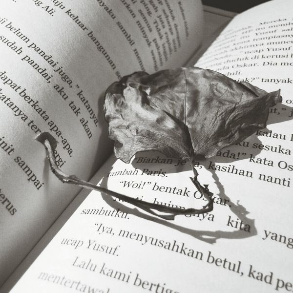 the leaf and book.