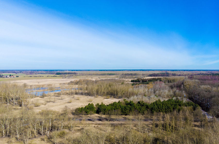 Berlin Buch Drone  Beach Beauty In Nature Cloud - Sky Day Dronephotography Grass Horizon Over Water Landscape Nature No People Outdoors Scenics Sea Sky Water