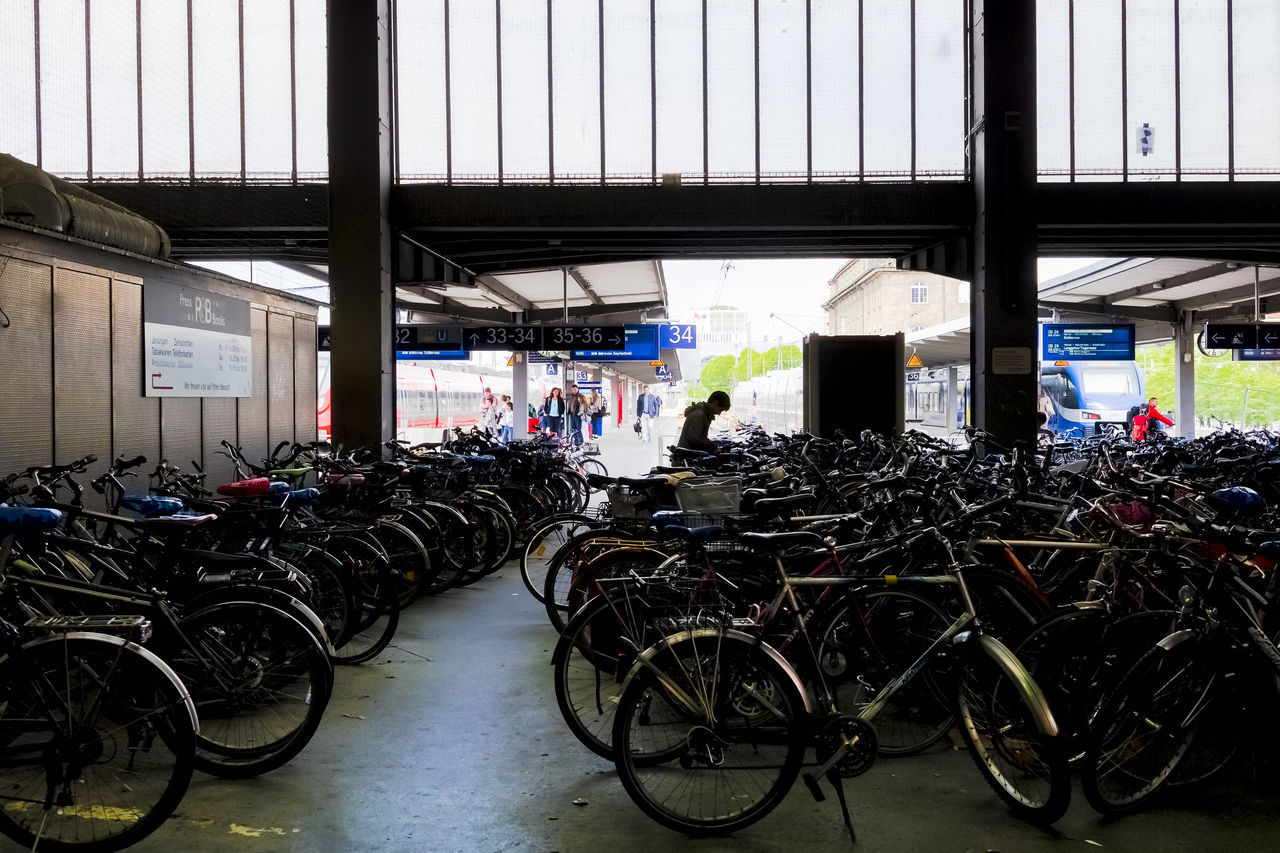 bicycle, transportation, mode of transportation, land vehicle, parking lot, stationary, indoors, in a row, large group of objects, parking, business, day, bicycle rack, architecture, built structure, abundance, no people, retail, consumerism, bicycle shop