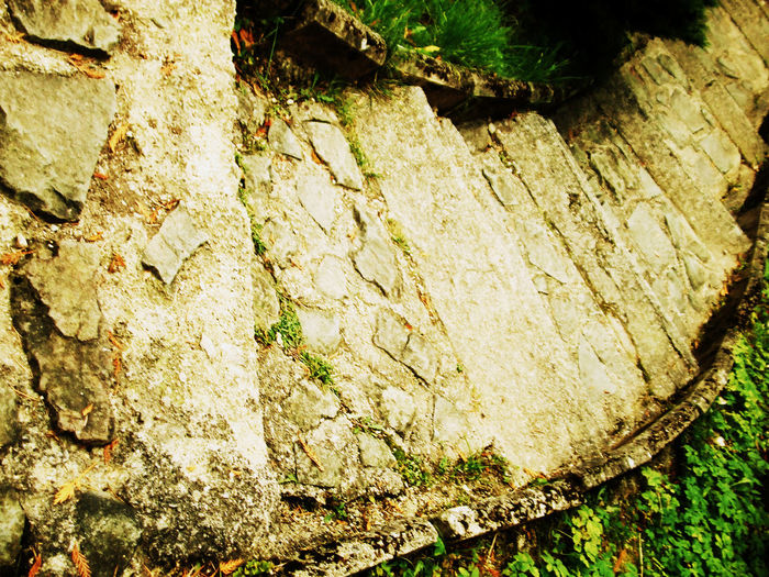 Stairs Green Nature Rock