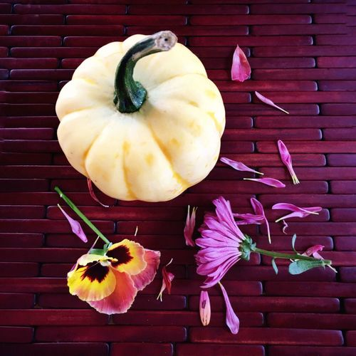 Fall Season Fall Colors Still Life Vibrant Color Arrangement Nature Is Art Textures Close-up Foodphotography Seasons Change flowers Freshness Bird Food And Drink Red Medium Group Of Objects No People Flowers,Plants & Garden Flowers And Vegetables