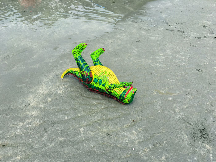 High Angle View Of Dinosaur Toy On Shore