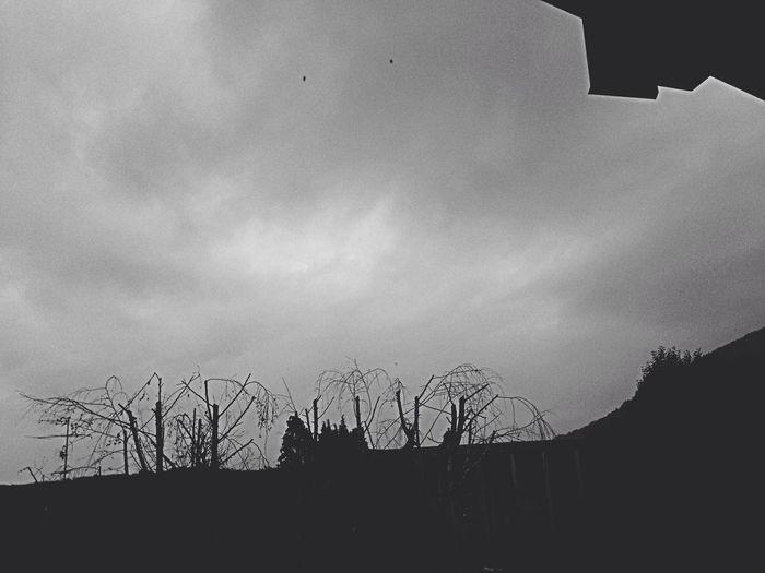 November .