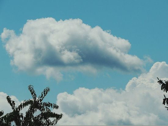 Cloudgazing Cloud - Sky Sky Nature Day Outdoors Beauty In Nature No People Close-up Freshness Blue Summer