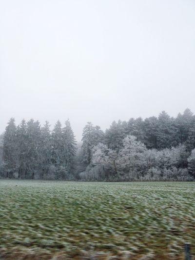 Open Edit Hello World Winter