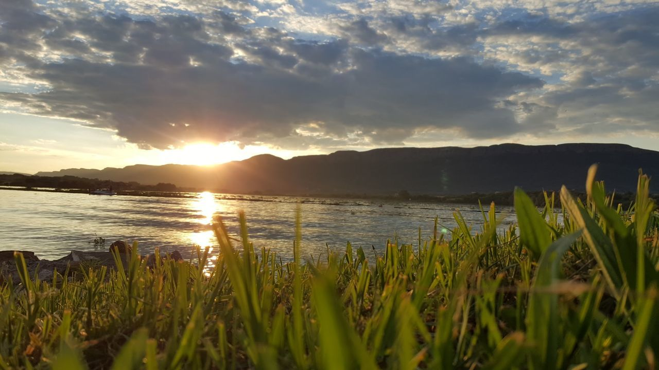 nature, sunset, beauty in nature, tranquility, scenics, tranquil scene, sky, water, no people, grass, sun, outdoors, growth, landscape, day