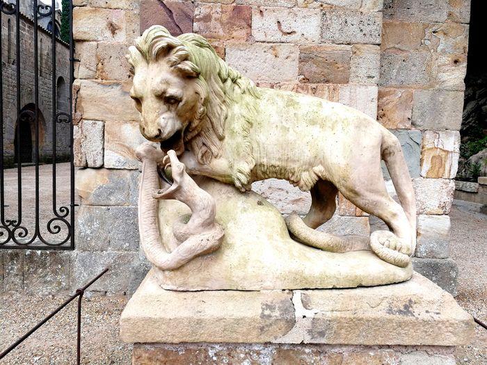 City Lion -