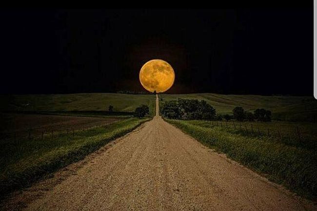 When you've got nothing left to give , find another life to live . Moon Night Longwalk Vegan Plantfarm Heavilymedicated Mystery Landscape Rural Scene