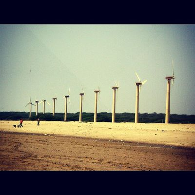 Windmill Blue Sky Sand LetsCaptureEveythingBeforeWorldEnds Justcantgetenough Trip Gujarat Beach De3p Photography