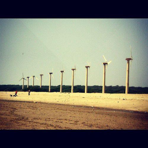 Windmill Blue Sky Sand LetsCaptureEveythingBeforeWorldEnds Justcantgetenough Trip Gujarat Beach De3p Photography