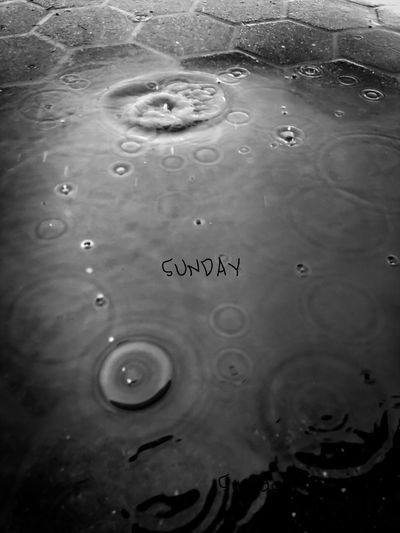 Rain. Water No