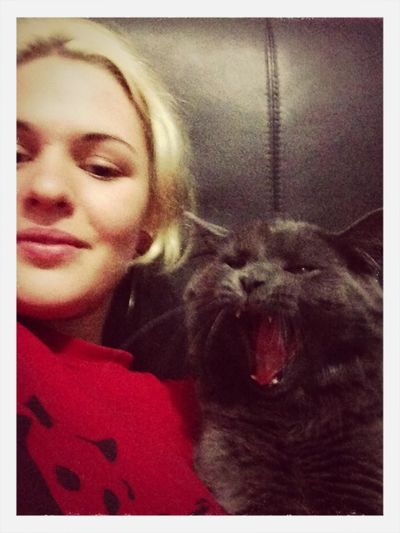 My Cute Kitty And Me