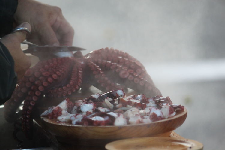 Close-up of hands cutting octopus in home