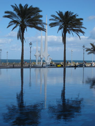 Library Pool Alexandria Library Alexandria, Egypt Beach Cloud - Sky Day Library Pool Nature No People Outdoors Palm Tree Pool Reflection Sea Sky Travel Travel Destinations Tree Vacations Water
