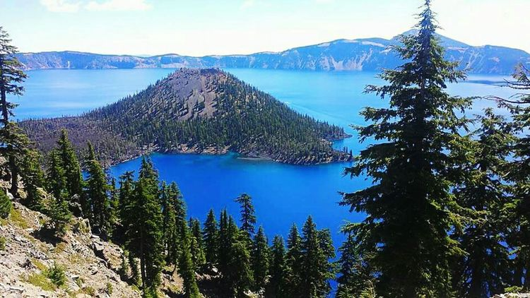Crater Lake in Oregon Sun Day Outdoors Clear Sky Grass Green Color Travel Destinations Blue Famous Place Tree Nature Landscape Travel Tranquility Mountain Geology Crater Lake Crater Lake National Park Beauty In Nature Sky National Park Collection