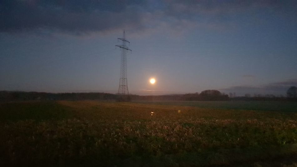 moonshine Field Night Landscape Grass No People Rural Scene Silhouette