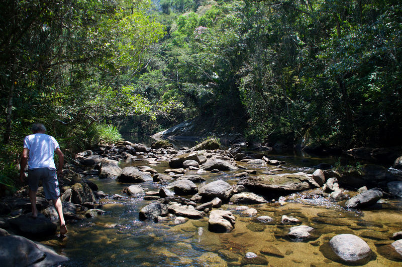 Lídice - Rio Claro - RJ Man Nature Tranquility Beauty In Nature Nature_collection River Stones Tranquil Scene Walking
