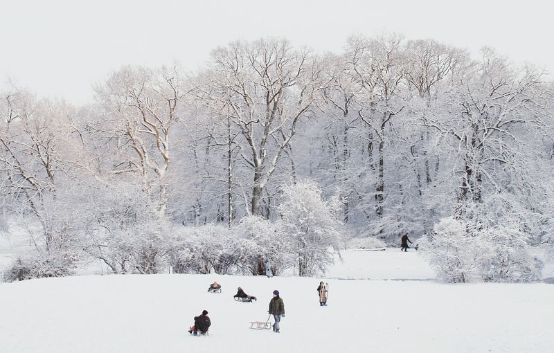 Winter wonderland ❄. Winter Beauty In Nature Nature Nature_collection Snow Snowing Outdoors Kids Children Cold Temperature Cold Winterwonderland Tree White WhiteCollection Minimalism Taking Photos My Year My View Shootermag EyeEm Best Shots Snow Sports Traveling Home For The Holidays