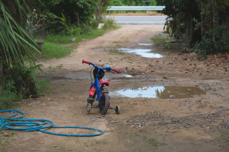 Children riding bicycle on road