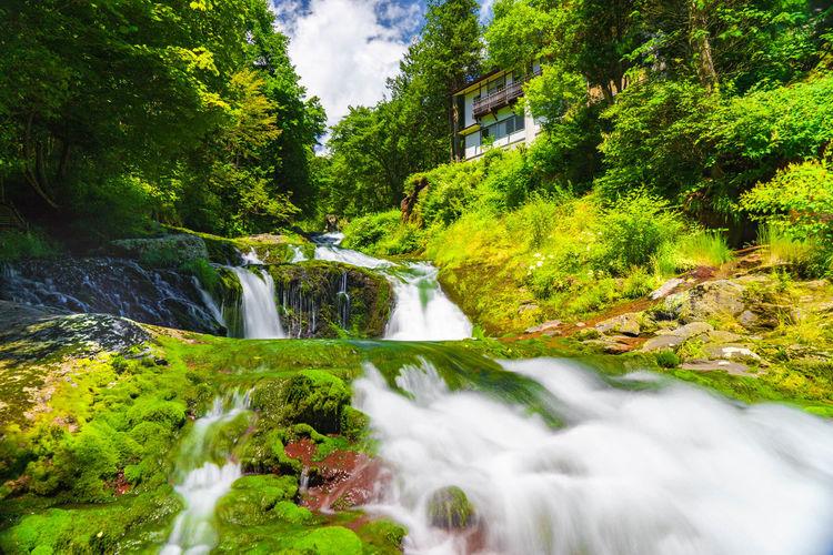 Scenic view of oshidori waterfall