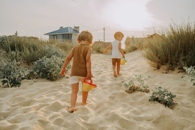 Rear view of bothers walking on beach