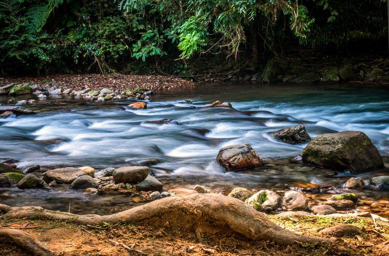 Wild River in