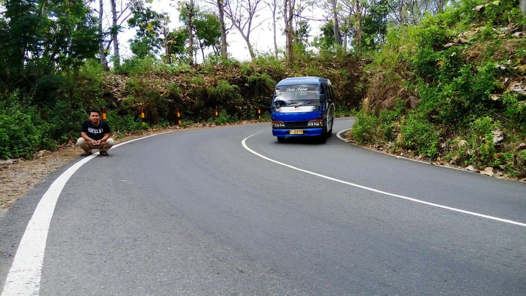arak arak bondowoso Indonesian Street (Mobile) Photographie Bondowoso Tree Road Land Vehicle Sky