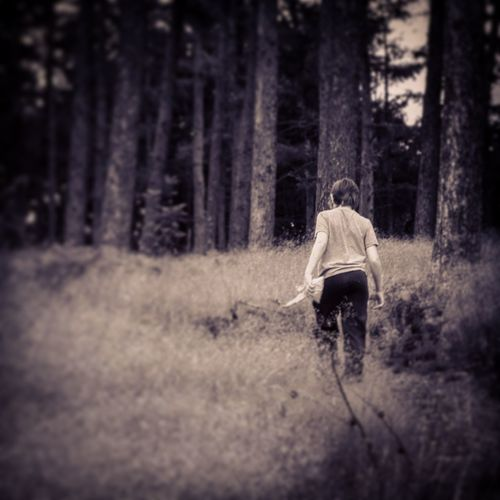 Capturing Freedom In The Forest Woods Walk Alone Peaceful