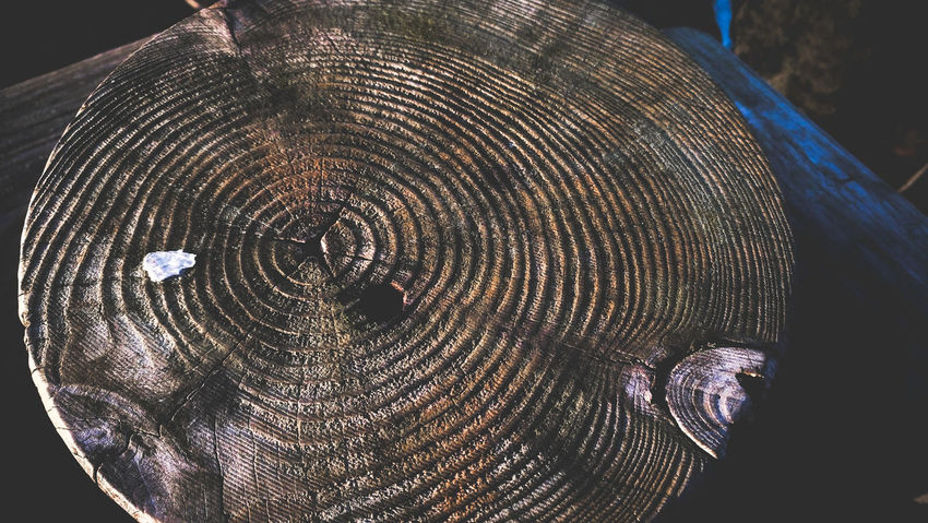No People Photography Abstract Photography Abstract Latvia Riga Tree Wood Wood - Material Wooden Old Experimental Photography Photooftheday Dopephotography Photographer Night Concentric Outdoors Space Close-up Astronomy