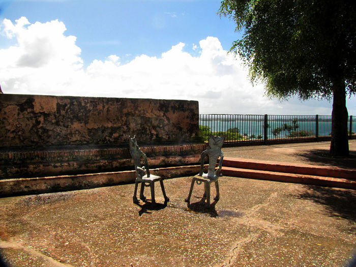 Two chairs in a public place in San Juan, Puerto Rico Sky Cloud - Sky Tree Nature Wall Plant Day No People Bench Outdoors Architecture Built Structure Absence Seat Railing Water Sunlight Empty Tranquility Landscape Park Bench San Juan PR
