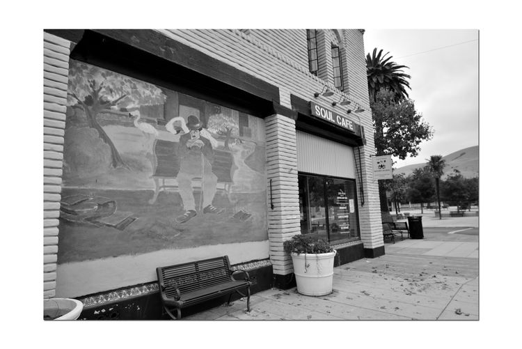 Historic Niles District 6 Niles Town Plaza Old Railroad Town Soul Cafe Neighborhood Diner Plate Glass Windows Mural Close-up Charlie Chaplin On Park Bench Storefront Brick Facade Arched Windows Shutters Bench Sidewalk Flower Planter Trees Palm Tree Seating Monochrome Monochrome_Photography Black & White Black & White Photography Black And White Black And White Collection  Street Scene Urban Photography Leaves On Sidewalk Signs Public Art Park Bench