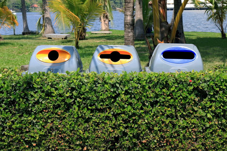 Bin, garbage bin plastic, Plastic waste bin 3 types of waste for recycle in tree wall at garden public Bin Garbage Garbage Bag Garbage Bin Garbage Can Garbage Disposal Green Color Growth Leaf Nature Outdoors Palm Tree Park Plant Side By Side Tree Tree Trunk Trunk Waste Waste Bin Waste Disposal Waste Management Waste Plastic Waste Pollution