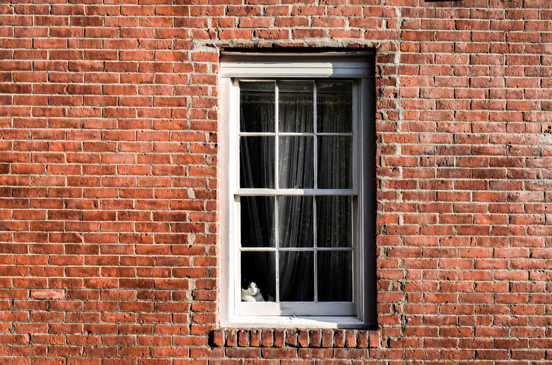 Full frame shot of window on wall of building