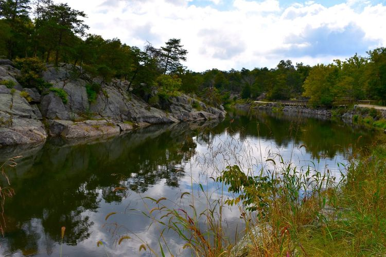 Great Falls Great Falls Virginia Travel Beauty In Nature Lake Nature No People Outdoors Photographer Photography Reflection Scenics Sky Tranquil Scene Tranquility Travel Destinations Tree Water