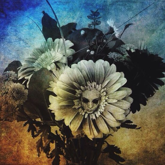 Flowers EyeEm Best Edits EyeEmBestPics Darkart Darkportrait Abstracters_anonymous Gothicportrait IPhoneography