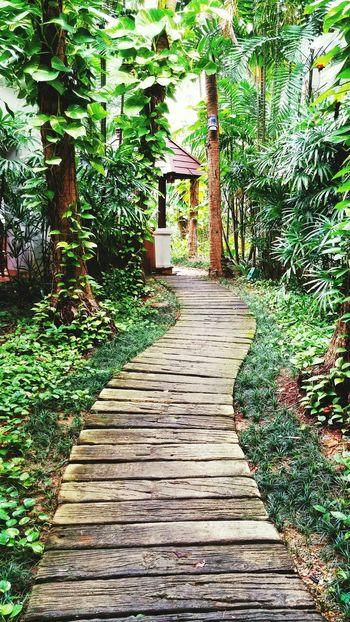 When in Phuket Travel Thailand