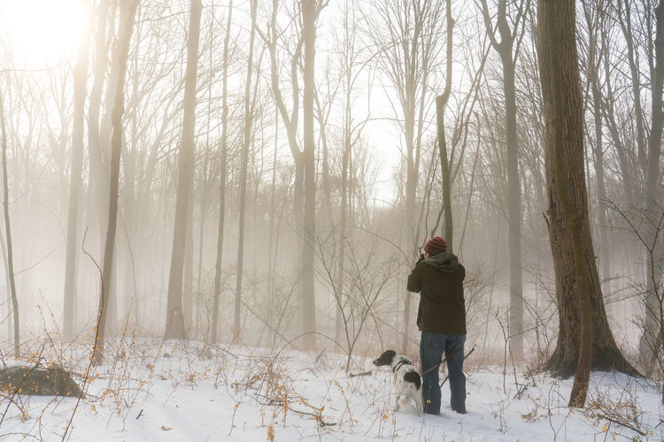 Man Trees Winter Dog Fog Forest Looking Photographer Snow