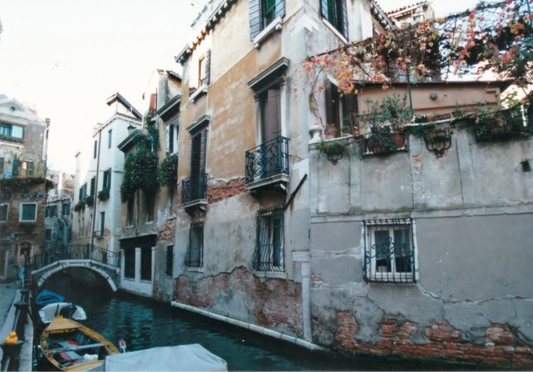 """Vacation Venice Italy The Week On EyeEem Sunny Day No People Grape Vines Hanging From Top Of Balcony Old Buildings Ivy Growing From Balconys Small Bridge Walkway To Cross The """"street"""" Small Balconys Oround Windows For Protection Bars On Windows For Safety? Cement Chips Away From Brick Small Boats Parked Like Cars Streets Of Venice"""