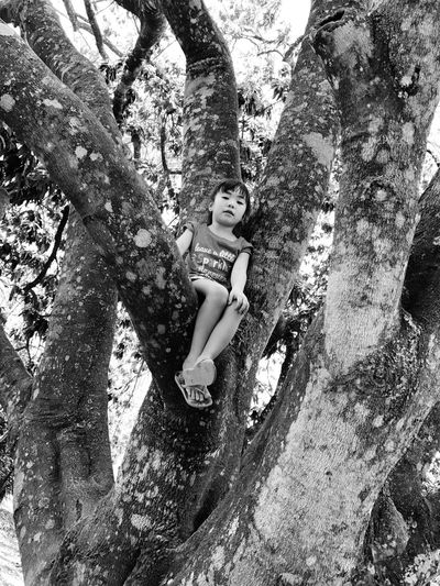 Tree Trunk Tree One Person Smiling Day Looking At Camera Outdoors Real People Nature Branch Climbing Tree