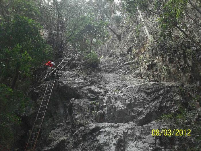 Cacahuamilpal gro