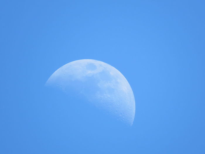 Blue moon by Day Blue Sky Daylight Blue Moon Moon Astronomy Space Crescent Half Moon Clear Sky Moon Moon Surface Space Exploration Blue Planetary Moon