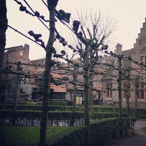 Belgium Brugge Europe Travel
