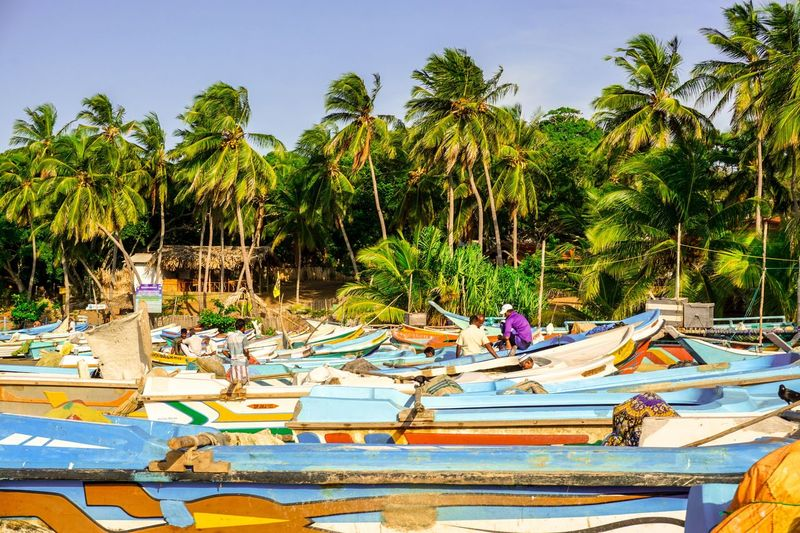 Boats in Arugam