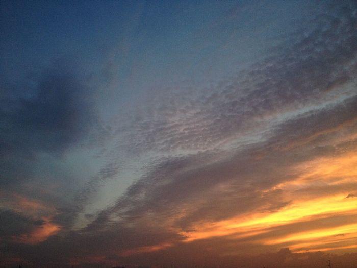 Nature 自然 雲 くも 空 ソラ