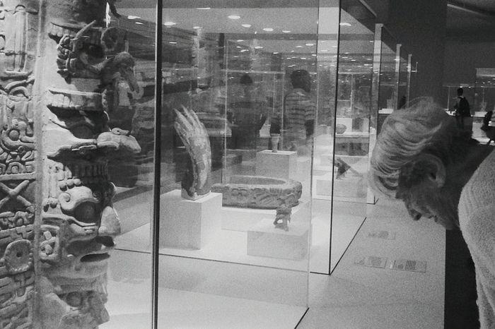Living History art history, maias, Art Gallery Art History